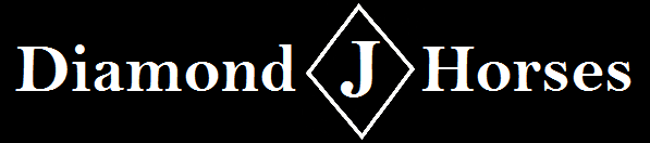 Diamond J Horses